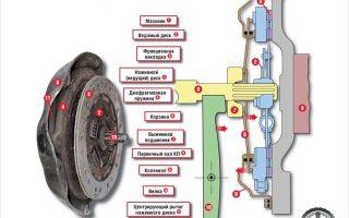 Понятие регулировки сцепления, инструкция процесса, подготовка и этапы