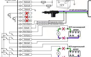 Инструкция со схемой подключения сигнализации к центральному замку и как подключить доводчик стекол к автосигнализации своими руками