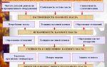 Обзор основных промывочных масел: характеристики и особенности